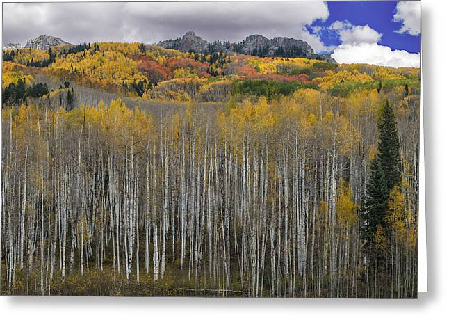 Colorado Splendor Greeting Card