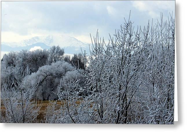 Colorado Springs Winter Greeting Card