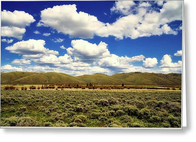 Colorado Vista Greeting Card by L O C