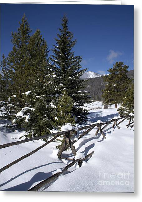 Colorado Winter Wonderland Greeting Card