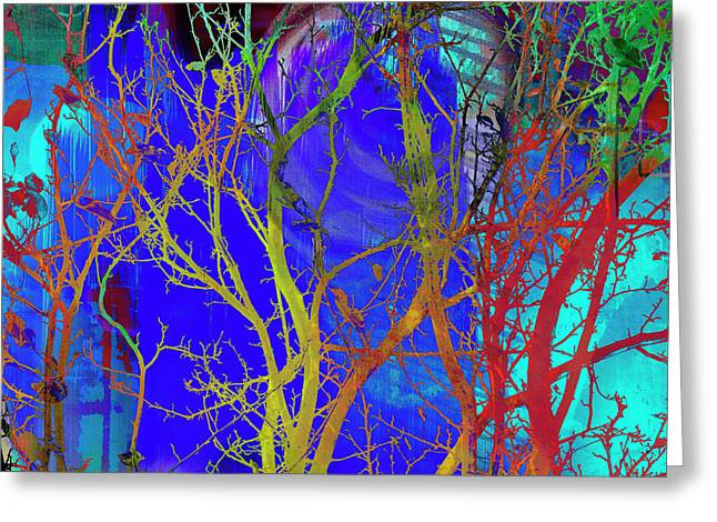 Greeting Card featuring the photograph Colored Tree Branches by Susan Stone