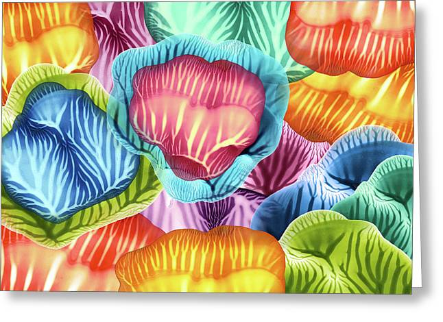Colorful Abstract Flower Petals Greeting Card