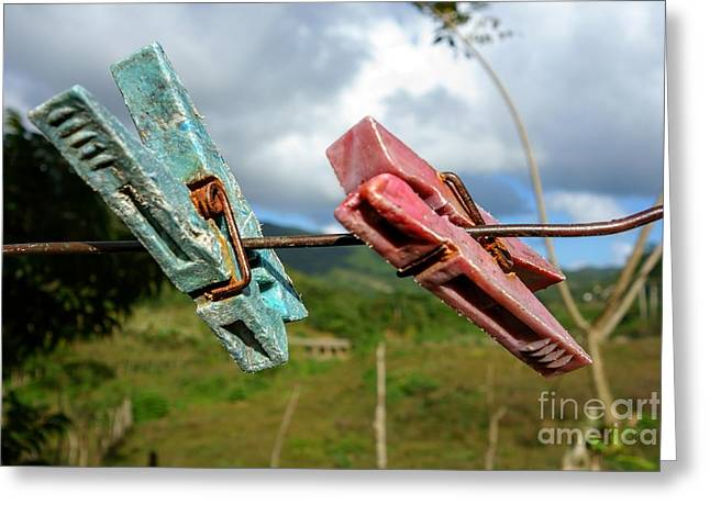 Colorful And Worn Clothespin On A Copper Wire In Cuba  Greeting Card by Mikko Palonkorpi