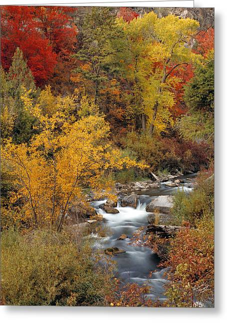 Colorful Canyon Greeting Card