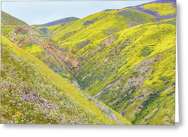 Greeting Card featuring the photograph Colorful Canyon by Marc Crumpler