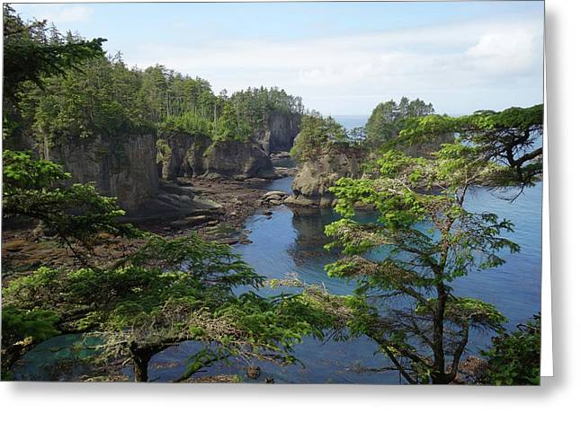 Colorful Cape Flattery Washington Greeting Card by Dan Sproul
