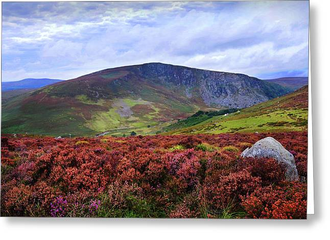 Greeting Card featuring the photograph Colorful Carpet Of Wicklow Hills by Jenny Rainbow