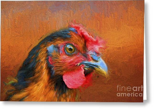Colorful Chicken Greeting Card