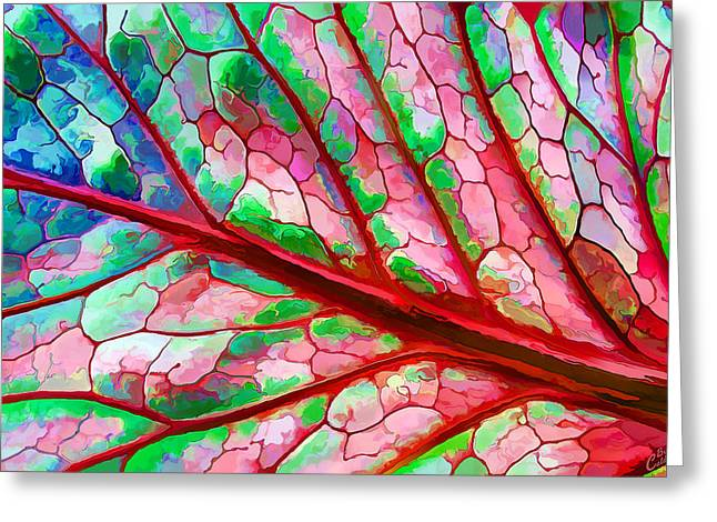 Colorful Coleus Abstract 5 Greeting Card