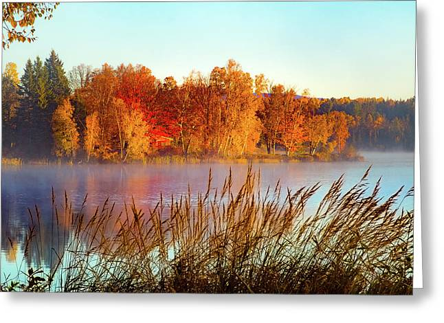 Colorful Dawn On Haley Pond Greeting Card
