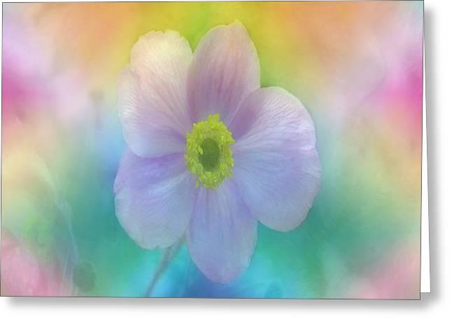 Colorful Dreams Greeting Card