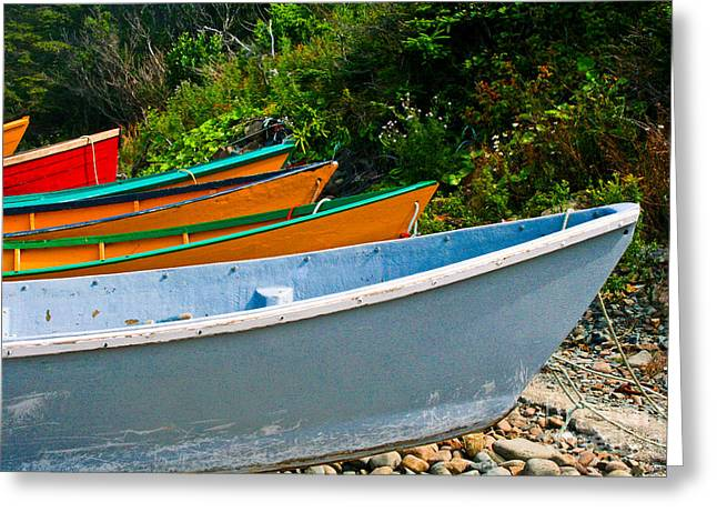 Colorful Fishing Boats On A Rocky Shore  Grand Manan Greeting Card