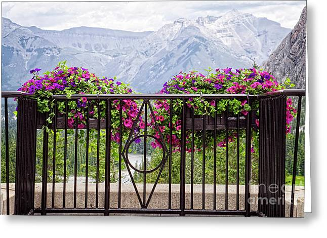 Colorful Flowers On The Wrought Iron Fence Greeting Card by Lucinda Walter