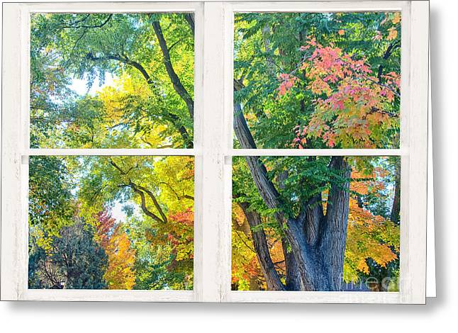 Colorful Forest Rustic Whitewashed Window View Greeting Card