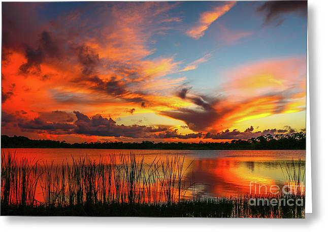 Colorful Fort Pierce Sunset Greeting Card by Tom Claud