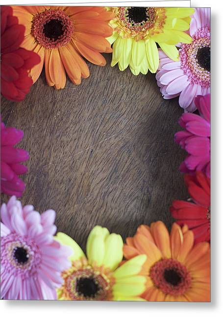 Colorful Gerbera Daisies In A Circle Greeting Card