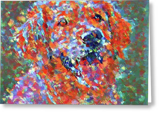 Colorful Golden Retriever Greeting Card by Dan Sproul