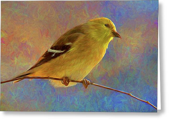 Colorful Goldfinch - Digital Painting Greeting Card