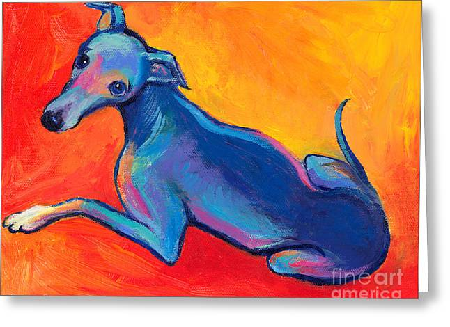 Prints Drawings Greeting Cards - Colorful Greyhound Whippet dog painting Greeting Card by Svetlana Novikova