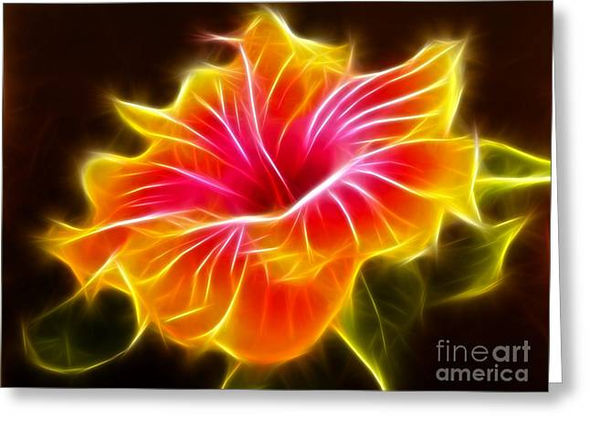 Colorful Hibiscus Flower Greeting Card by Pamela Johnson