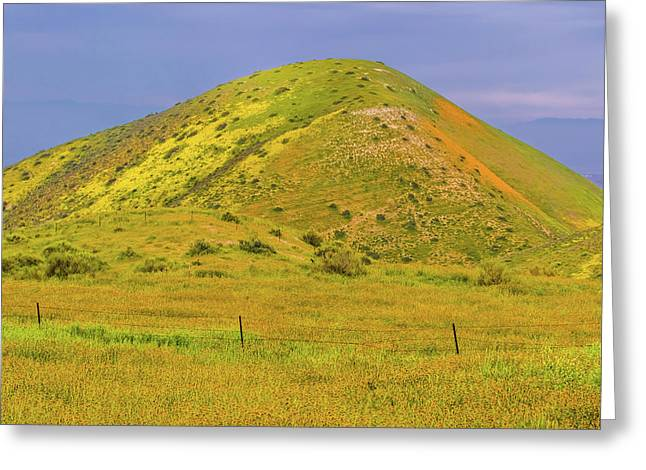 Greeting Card featuring the photograph Colorful Hill by Marc Crumpler