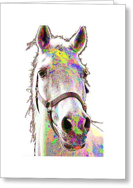 Colorful Horse Greeting Card