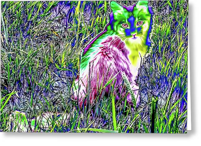 Colorful Kitty Greeting Card