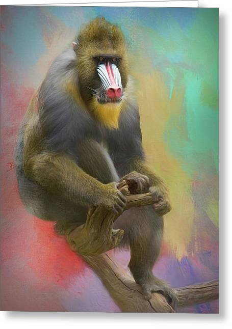Colorful Mandrill Greeting Card