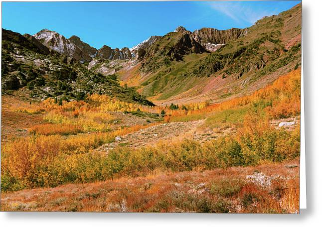 Colorful Mcgee Creek Valley Greeting Card