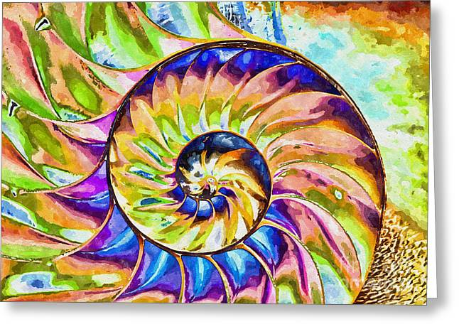 Colorful Nautilus Shell Greeting Card
