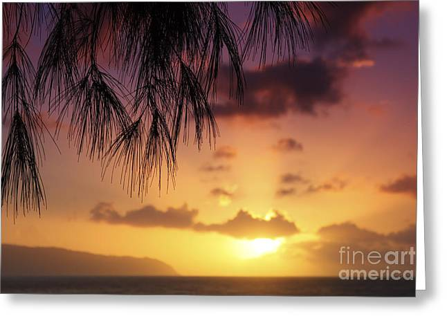 Colorful Oahu Sunset Greeting Card