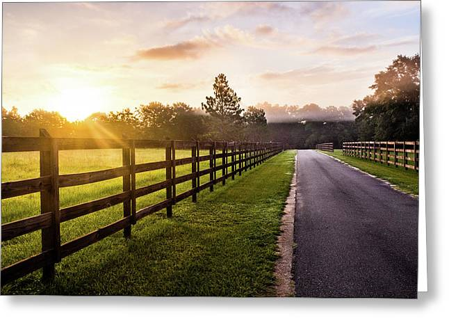 Greeting Card featuring the photograph Colorful Palette At Sunrise by Shelby Young