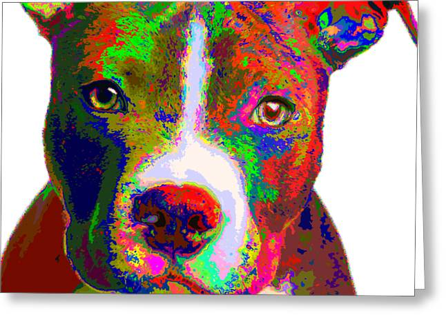 Colorful Pit Bull Terrier  Greeting Card