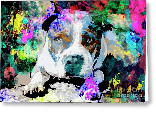 Colorful Pitbull Greeting Card by Jon Neidert