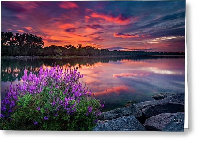 Colorful Presunrise Over Willow Bay Greeting Card by Scott Reyes