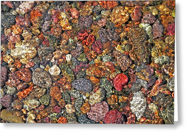 Colorful Rocks In Stream Bed Montana Greeting Card by Jennie Marie Schell