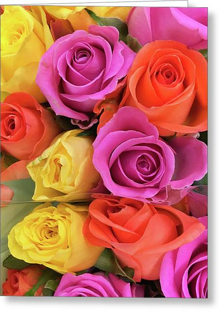 Colorful Roses Greeting Card by Tom Gowanlock