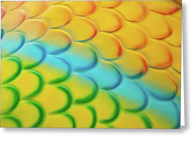 Colorful Scales Greeting Card by Adam Romanowicz