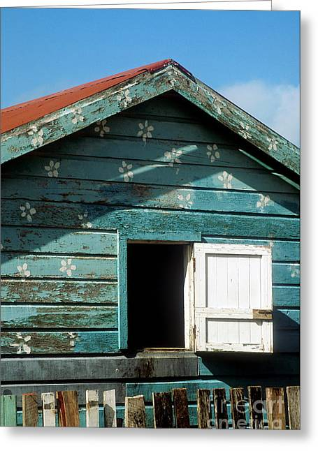 Colorful Shack Greeting Card by John Greim