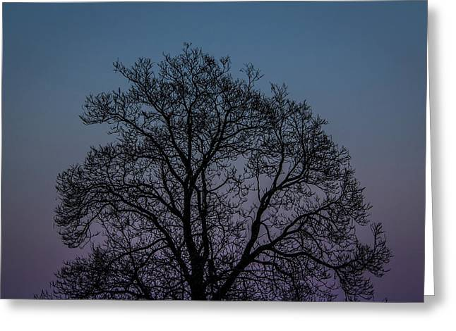 Colorful Subtle Silhouette Greeting Card