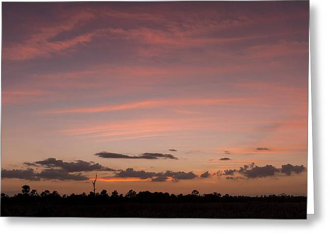 Colorful Sunset Over The Wetlands Greeting Card