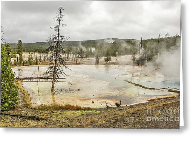 Greeting Card featuring the photograph Colorful Thermal Pool by Sue Smith
