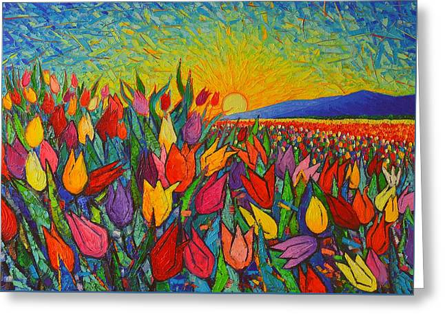 Colorful Tulips Field Sunrise - Abstract Impressionist Palette Knife Painting By Ana Maria Edulescu Greeting Card