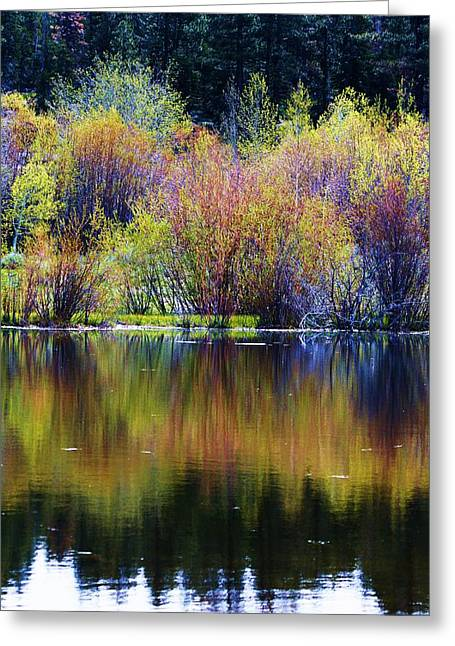 Colors Of Autumn In May Greeting Card by Russell  Barton