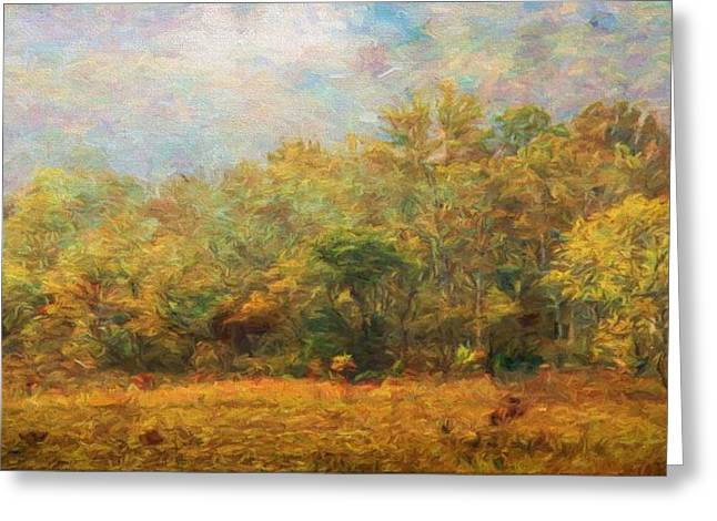 Colors Of Autumn In The Forest Greeting Card by Dan Sproul