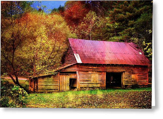 Colors Of Fall Greeting Card by Debra and Dave Vanderlaan