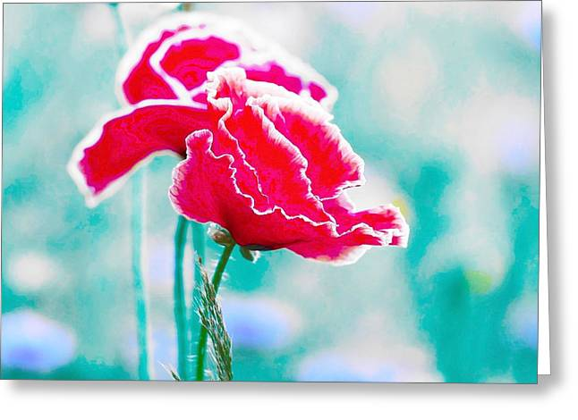 Colors Of Spring - Poppies 5 Greeting Card by Celestial Images