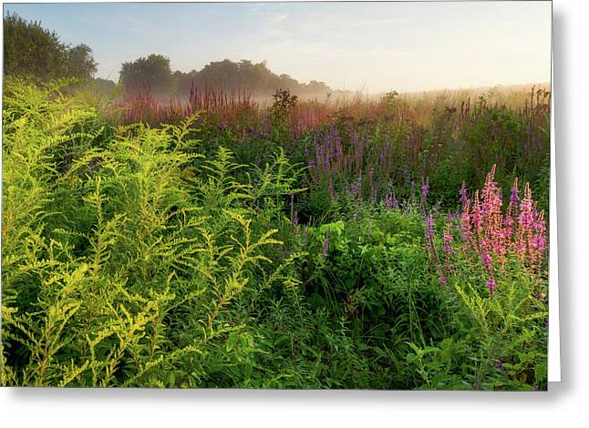 Colors Of Summer Square Greeting Card by Bill Wakeley