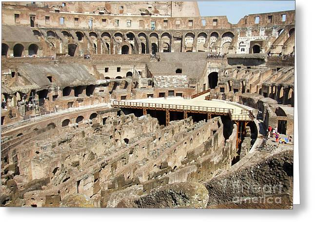 Colosseum Rome Italy Greeting Card