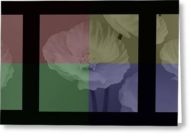 Colour Block Poppy Triptych Greeting Card by Lisa Knechtel